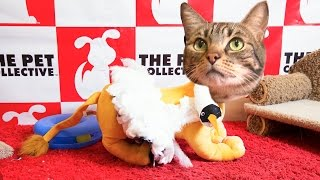 Fashion Police - Cat Fashion - Golden Globes 2015