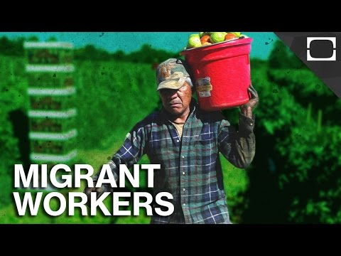 Would America's Farms Collapse Without Immigrants?