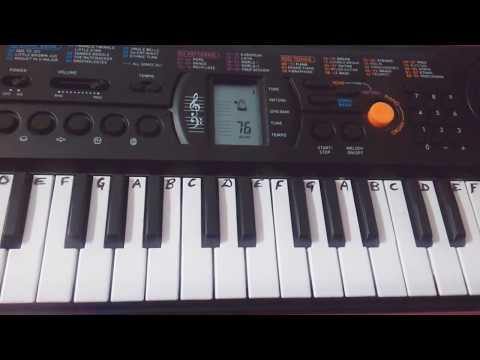 Doston is Jamane Ko Kya Ho Gya...~ Bhojpuri Song~  Keyboard Cover