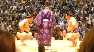 大相撲名古屋場所九日目、横綱・日馬富士-妙義龍の一番。横綱、途中で...