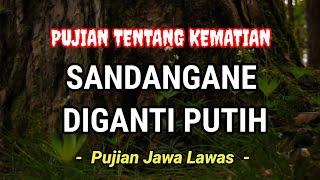 Download lagu PUJIAN JAWA LAWAS | SANDANGANE DIGANTI PUTIH | FUAD KAMAL