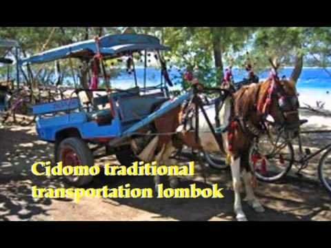 LOMBOK GUIDE TOUR AND TRAVEL.wmv