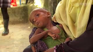 Ramping Up Sanitation to Ensure Rohingya Refugee Health