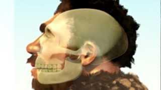 Neanderthal Man looks like you and me
