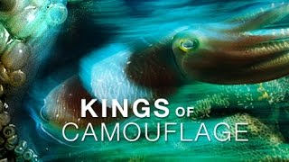 Ocean Documentary National Geographic | Kings of Camouflage Ocean Monsters