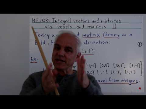 Integral vectors and matrices via vexels and maxels II | Data structures Math Foundations
