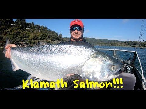 Klamath Salmon Fishing