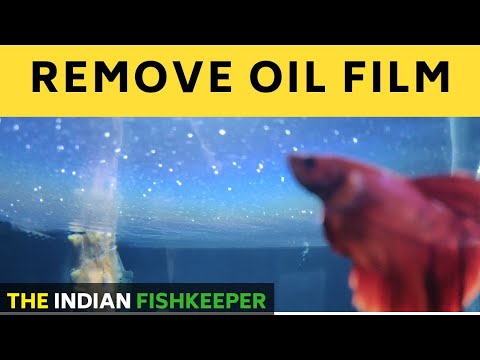How To Remove Oil Film From Water Surface