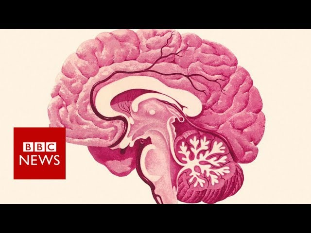 preventing-dementia-nine-tips-that-could-help-you-stay-sharp-bbc-news