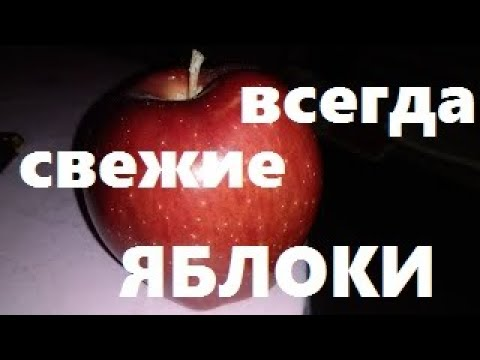 Как хранить яблоки в домашних условиях на зиму юлия миняева