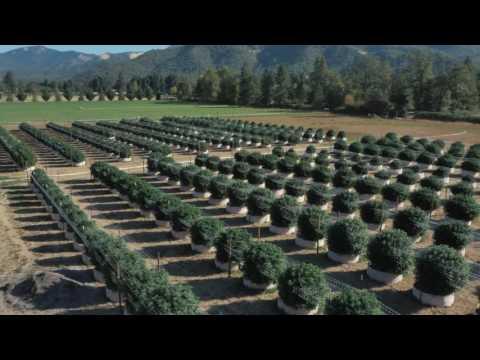 William's Wonder Farms | Applegate, OR