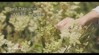 April Danann's Wild Foods