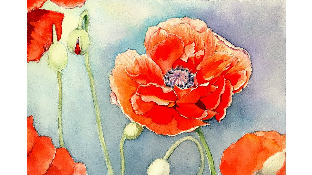 Watercolor Painting Demo Poppy Flower Youtube