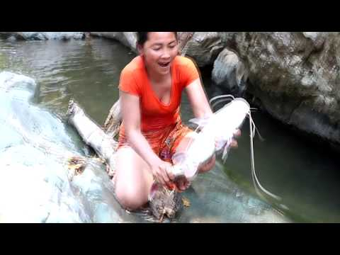 Survival skills: Catch a fish 2 kg by hand & grilled for food - Cook fish 2 kg eating delicious #70