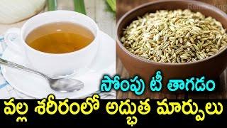 Fennel tea Health Benefits   What is Fennel Tea Good for?   Best Health Tips   Remix King