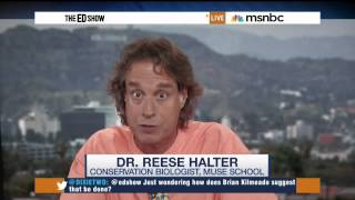 High Number of Shark Attacks are Because Sharks are Hungry, Says MSNBC Shark Expert