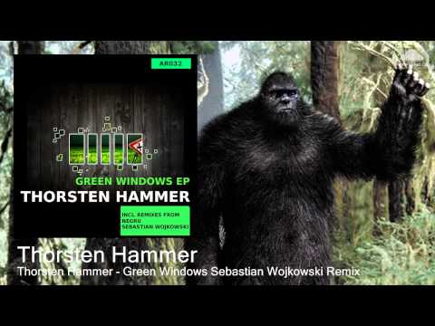 Thorsten Hammer - Green Windows Sebastian Wojkowski Remix