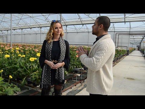 Entrevista com Modelo Internacional Joana Martins  Capital da Flor