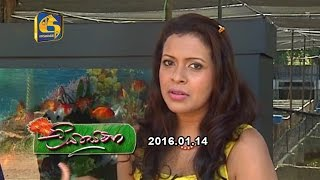 Liya Sewana - 14th January 2017