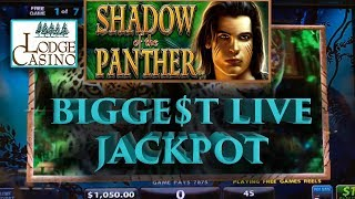 💸 Biggest Jackpot 💰 While Playing Live 🤑 | Shadow Of The Panther 🙀🐱