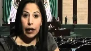 Sus compañeros hablan: Dip  Norma Leticia Salazar Vázquez