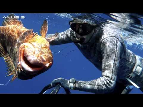 EPISODE#01 - ANUBIS SPEARFISHING ADVENTURES