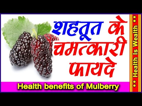 शहतूत के फायदे | Health and beauty benefits of Mulberry