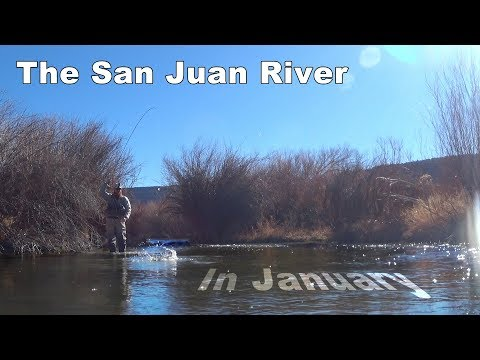 San Juan River in January - Large Rainbows and Nymphing Streamers - McFly Angler Episode 38