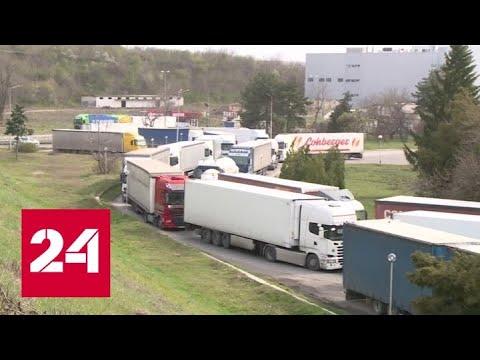 Хроники коронавируса: Трамп приспускает флаги, Болгария открывает границы - Россия 24
