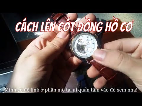 Đồng Hồ Cơ TEVISE Mẫu 795A Và Cách Lên Cót Cho đồng Hồ Cơ /Sơn Lee Tv