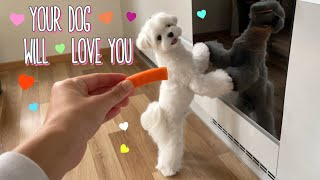 HOW TO MAKE A SUPER EASY SNACK FOR YOUR DOG ❤