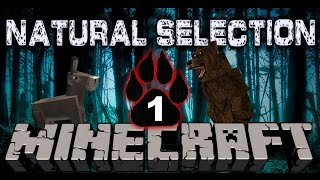 "Minecraft: ""Natural Selection"" Let"