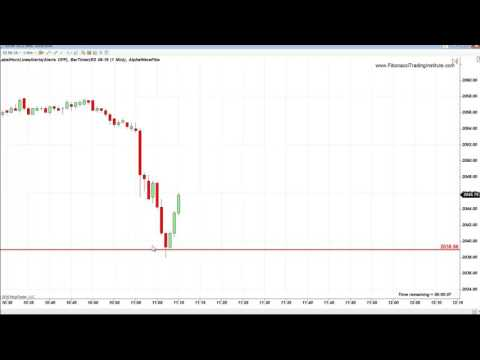 Fibonacci Trading Institute: FOMC S&P EMINI 8 PTS FIBONACCI RALLY AND 21 TRADES SUMMARY