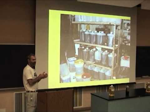 The Dirty Hands Biodiesel Coop - Lyle Rudensey - CBC 2008