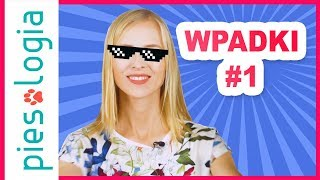 WPADKI - Bloopers #1