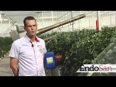 EndoSan - Agriculture