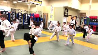 Lil Dragon: Awesome Focused Energy on Hand, Kicking and Form Drills!