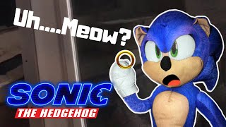 """Uh.....Meow?"" Scene (plush form)