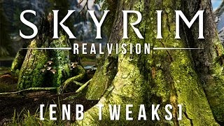 Skyrim RealVision ENB - Tweaked for YouTube & Mods [+download]
