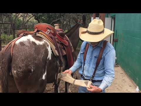 HOW SADDLING A MULE IS DIFFERENT FROM A HORSE