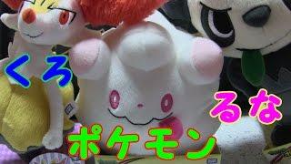 【ポケモン】最近仲間になったぬいぐるみ達【紹介】