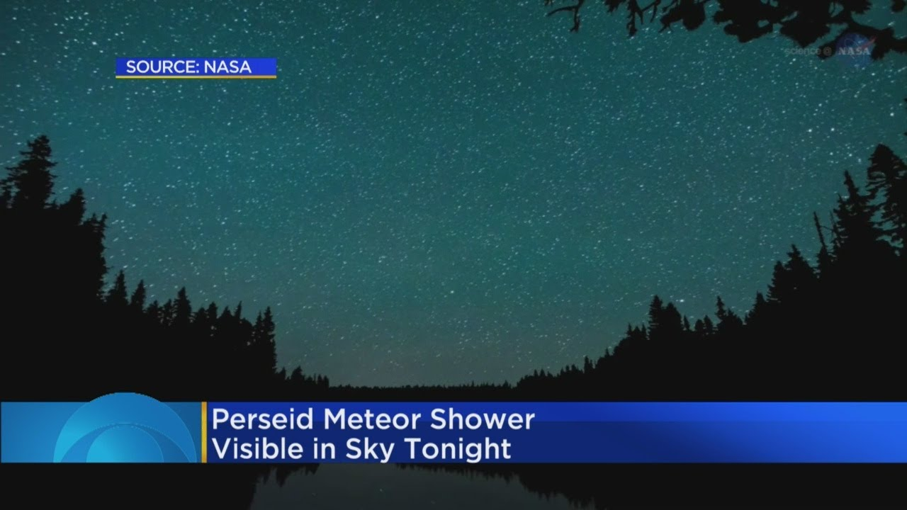 Perseid meteor shower to peak on Tuesday night