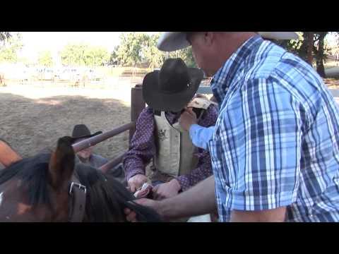 California Bronc Riders School