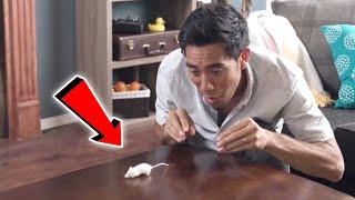 top magic tricks collection 2018 incredible zach king magic tricks best magic trick ever