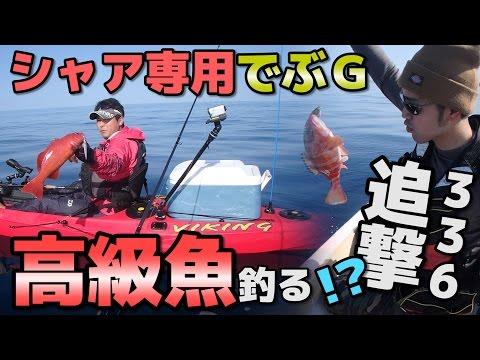 ハイサイ号出陣!高級魚アカジン釣れるか!?