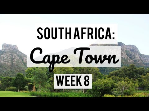 SOUTH AFRICA: CAPE TOWN WEEK 8 VLOG | HANGING OUT WITH PENGUINS AND A BABOON FIGHT??