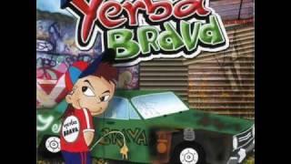 YERBA BRAVA - el fuerte
