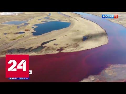 Путин распорядился расследовать, кто виноват в экологической катастрофе в Норильске - Россия 24