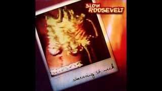Slow Roosevelt - Damn Fine Mule