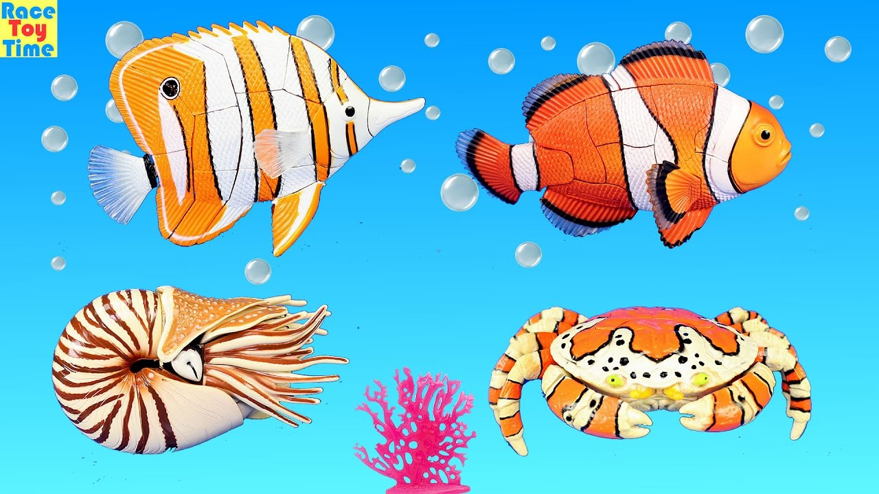 Sea Animals Toys For Children Educational 3D Puzzles - Learning Animals  Names For Kids Toddler